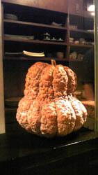 20090818かぼちゃ?.jpg